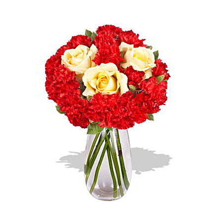 Carnation Delight: Mother's Day Flower Bouquets Australia