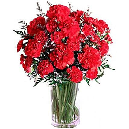 Carnation Delight: Send Housewarming Flowers to Canada