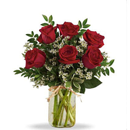 Half Dozen Red Roses: Rose Day Gift Delivery in Canada