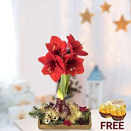 Christmas Floral Arrangement With Rochers: Flowers and Chocolates to Germany