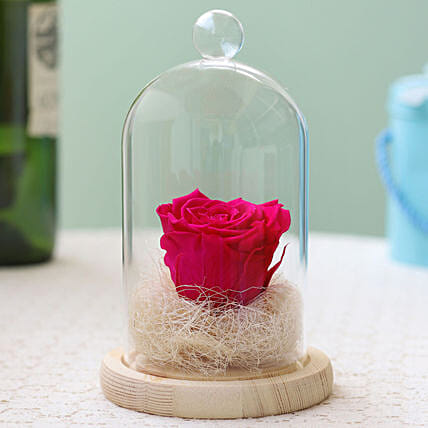 Hot Pink Forever Rose in Glass Dome: Send Forever Roses to Hungary