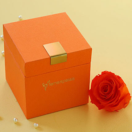 Orange Flame Forever Rose in Orange Box: Gifts to Hungary