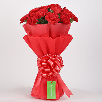 12 Red Carnations Bouquet in Red Paper: Flower Bouquets