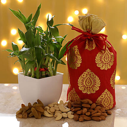 2 Layer Bamboo & Dry Fruits: Combo Gifts