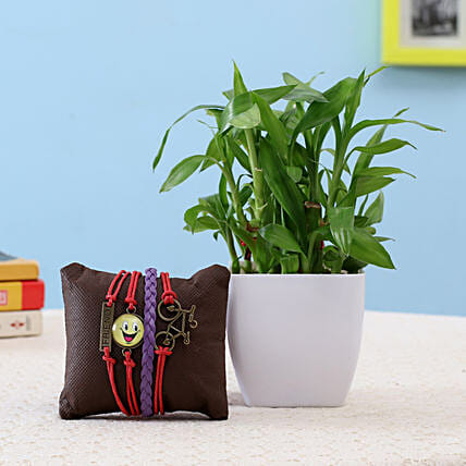 2 Layer Lucky Bamboo & Friendship Band: Good Luck Plants - Friendship Day