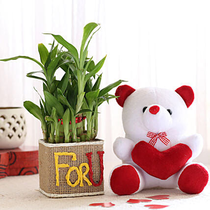 2 Layer Lucky Bamboo In For U Vase With Teddy Bear: