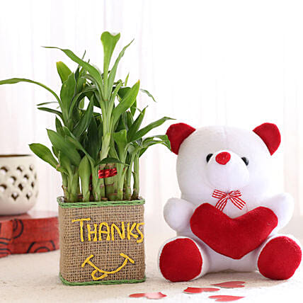 2 Layer Lucky Bamboo In Glass Vase With Teddy Bear: Plants N Teddy Bears