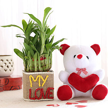 2 Layer Lucky Bamboo In My Love Vase With Teddy Bear: