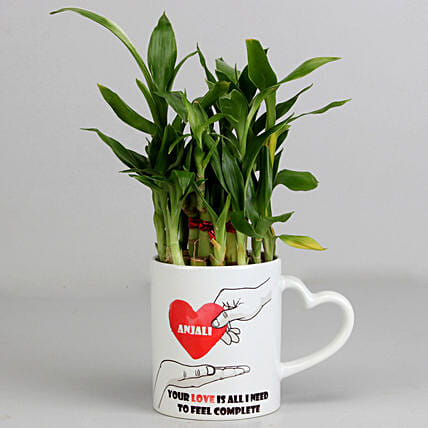 2 Layer Lucky Bamboo Plant in Heart Ceramic Mug: Valentines Day Lucky Bamboo