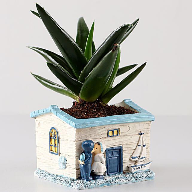 Aloe Vera Plant In White Seaside House Planter: Ornamental Plant Gifts