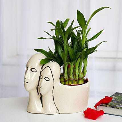 Lucky Bamboo Plant in Couple Pot: Spiritual Plant