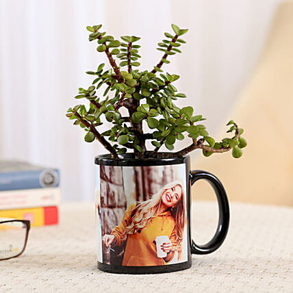 Black Personalised Mug With Jade Plant: Personalised Pot plants