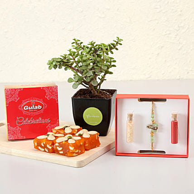 Designer Ganesha Rakhi & Plant Combo: Rakhi With Plants