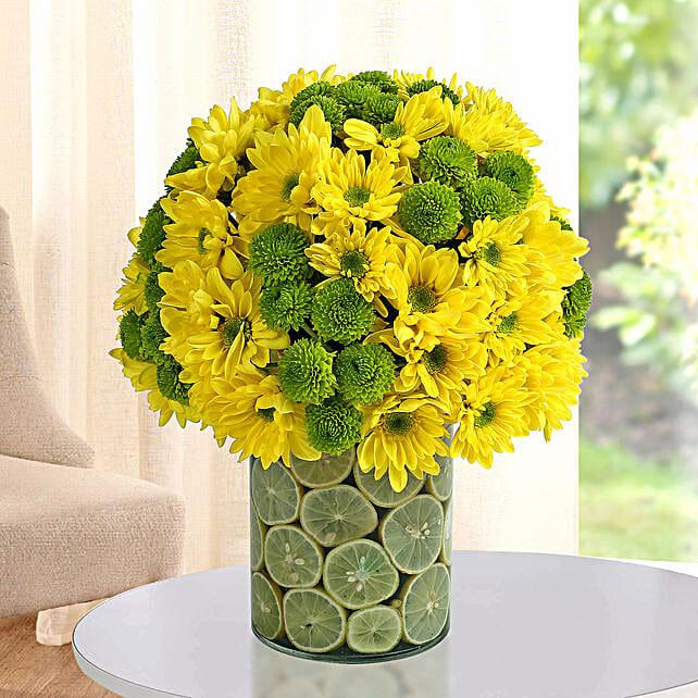 Fresh Daisy Arrangement: Send Chrysanthemums