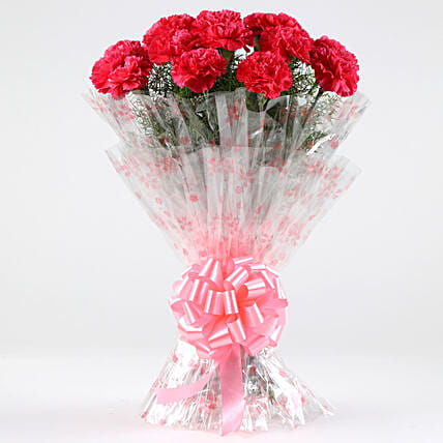 Graceful Love-18 Dark Pink Carnations Bouquet: Send Carnations