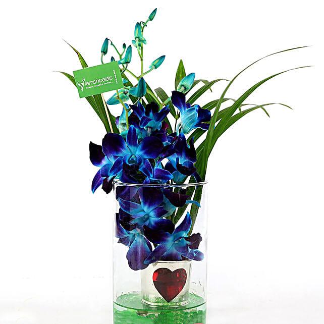 Hearty Orchid Vase Arrangement: Send Orchids