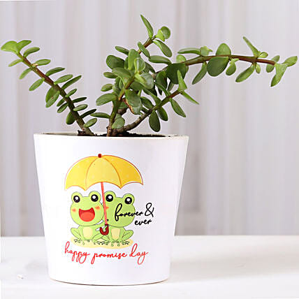 Jade Plant in Happy Promise Day Pot: Cactus and Succulents Plants