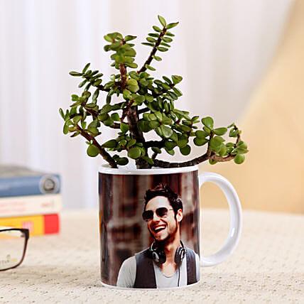 Jade Plant In Stylish Personalised Mug-White: Personalised Pot plants