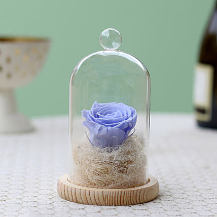 Lavender Blue Forever Rose In Glass Dome: Forever Roses