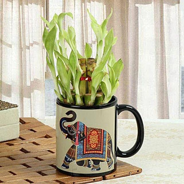 Luck In Mug: Send Spiritual Gifts