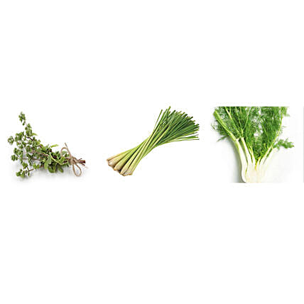 Marjoram Lemon Grass & Fennel Seeds Combo:
