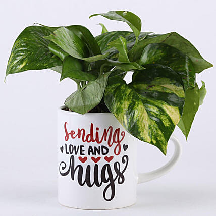 Money Plant In Love & Hugs Mug: