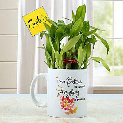 Mug with Bamboo Plant: Exotic Plants