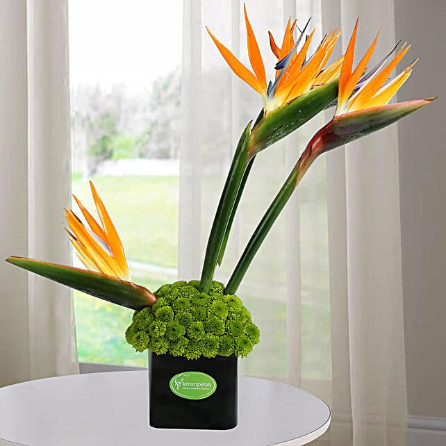 Orange Birds Arrangement: Exotic Flowers