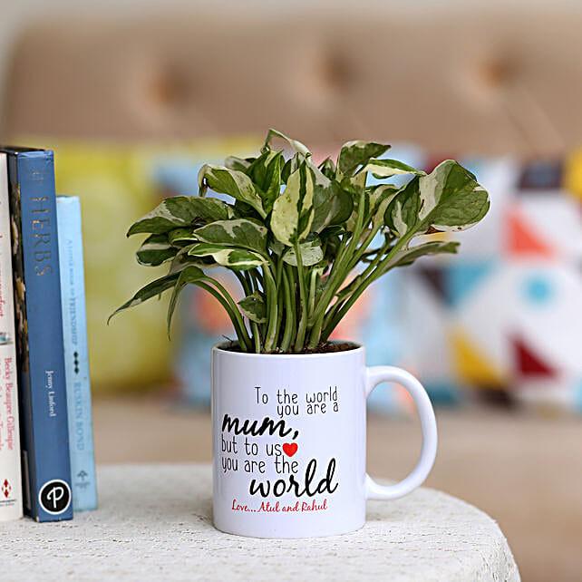 Pothos Plant In Personalised Mug For Mum: Personalised Pot plants