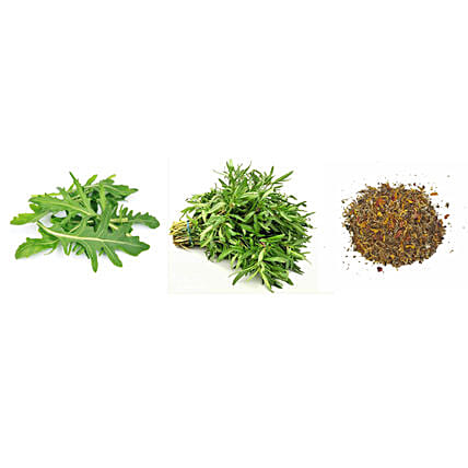 Rocket Savory & Anise Seeds Combo: Herbs Seeds