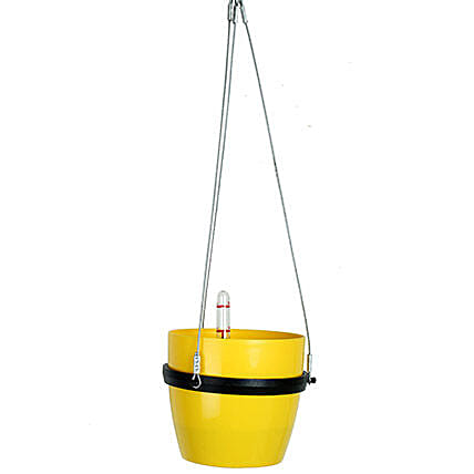 Self Watering Hanging Planter Yellow: Pots for Plants