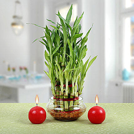 Three Layer Bamboo Plant With Red Candles: Candles