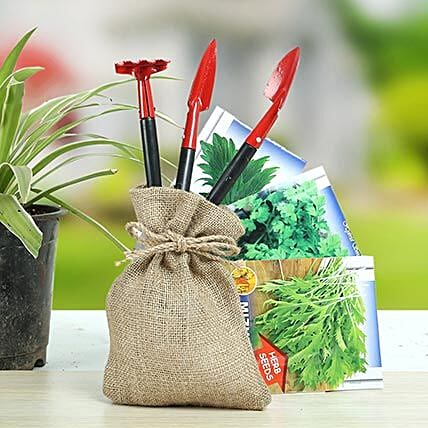 Special Herbs Hamper: Send Organic Seeds