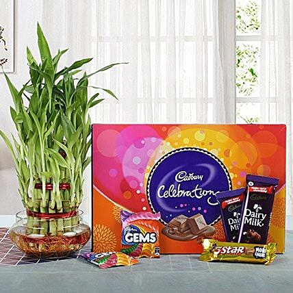 Yummy Chocolates N Three Layer Bamboo Plant: Send Gift Hampers to Ghaziabad
