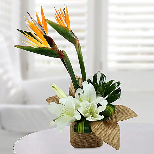 Asiatic Lily Arrangement:
