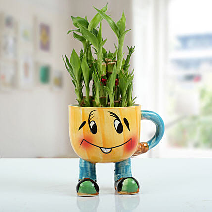 Two Layer Bamboo Plant With Smiley Vase: Home Decor