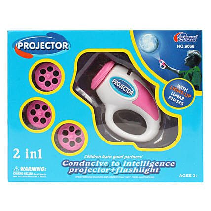 2 In 1 Electric Projection Slides: Toys and Games