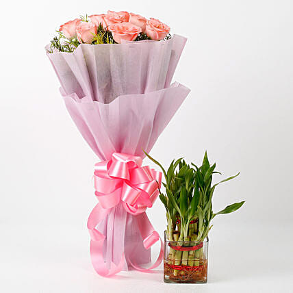 Pink Roses & Two Layer Bamboo Plant Combo: Buy Indoor Plants