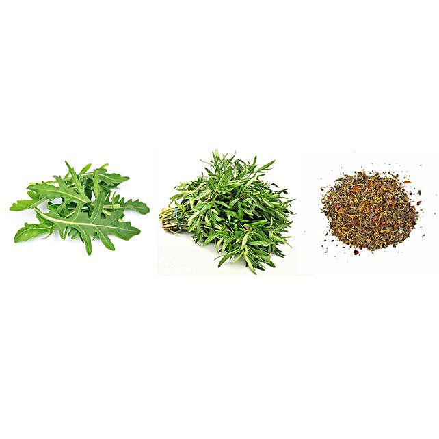 Rocket Savory & Anise Seeds Combo: Herbs Seeds