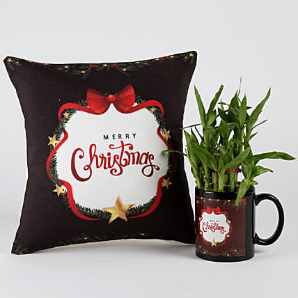 Christmas Special Two Layer Lucky Bamboo Plant Combo: Buy Christmas Plants