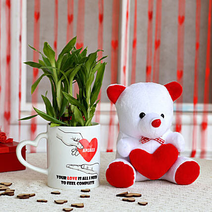 2 Layer Lucky Bamboo Plant with Teddy Bear Combo: