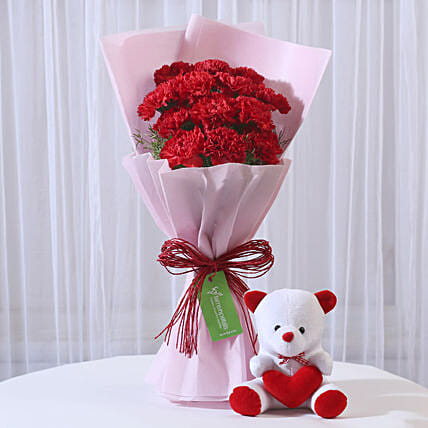 Teddy Bear & 12 Red Carnations Bouquet Combo: Soft Toys Gifts
