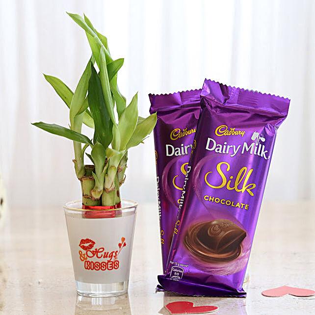 Cadbury Silk & Lucky Bamboo Combo: Lucky Bamboo Plants