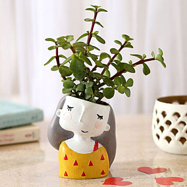 Jade Plant In Yellow Shy Girl Raisin Pot: Bestselling Plants