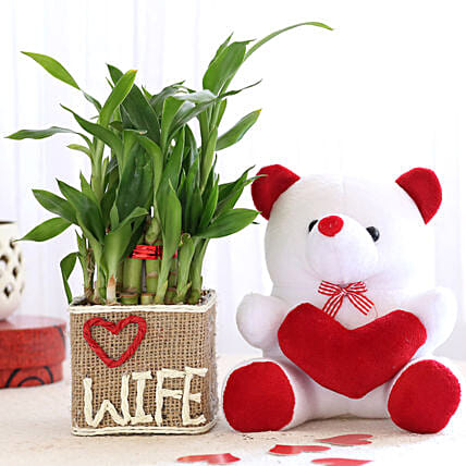 2 Layer Lucky Bamboo For Wife With Teddy Bear: Send Plants for Valentines Day