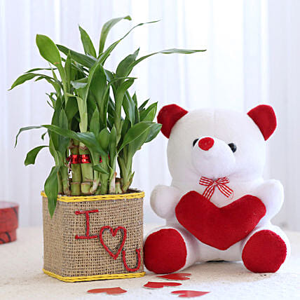2 Layer Lucky Bamboo In I Love U Glass Vase With Teddy Bear: Plant Combo For Valentines Day