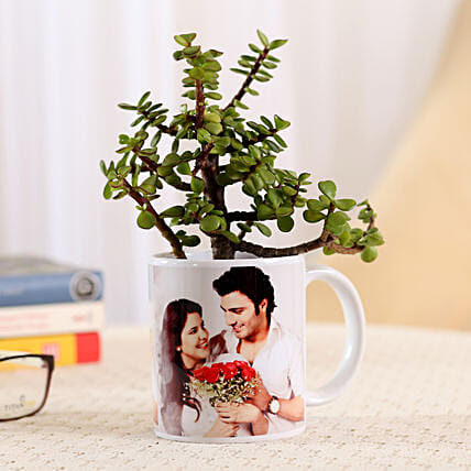 Jade Plant In Personalised Mug-White: Send Karwa Chauth Personalised Gifts