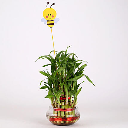 3 Layer Bamboo Plant With Honey Bee: Friendship Day Gifts