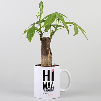 Pachira Plant In Personalised Hi Maa Mug: Personalised Pot-plants for Mothers Day