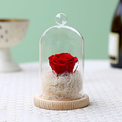 Classic- Forever Red Rose In Glass Dome: Roses